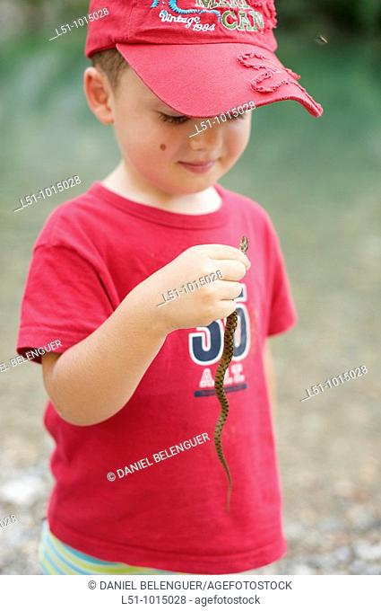 Boy holding and looking a little snake