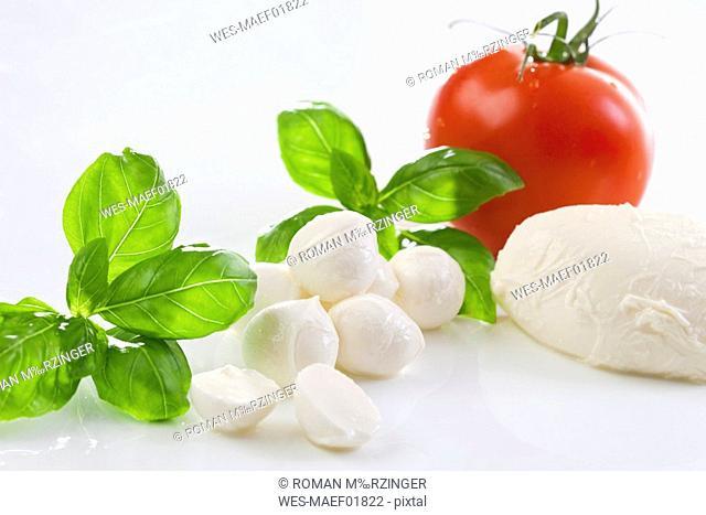 Mozzarella cheese and basil leaves