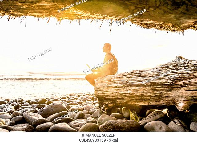 Man sitting with laptop looking out from beach in Juan de Fuca Provincial Park, Vancouver Island, British Columbia, Canada