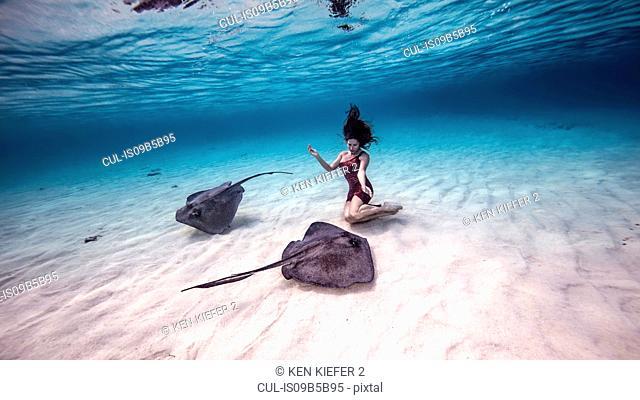 Female free diver kneeling near stingrays on seabed