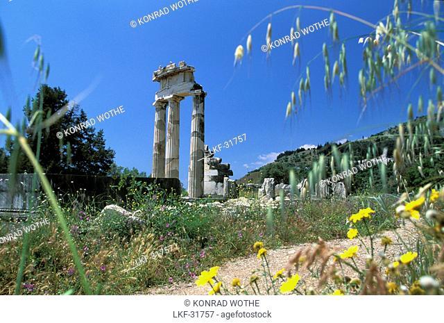 Tholos temple at the sanctuary of Athena Pronaia, Delphi, Peloponnese, Greece