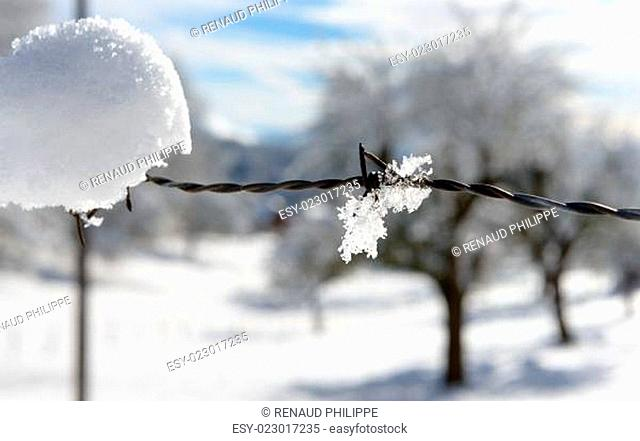 a wintry landscape with snow