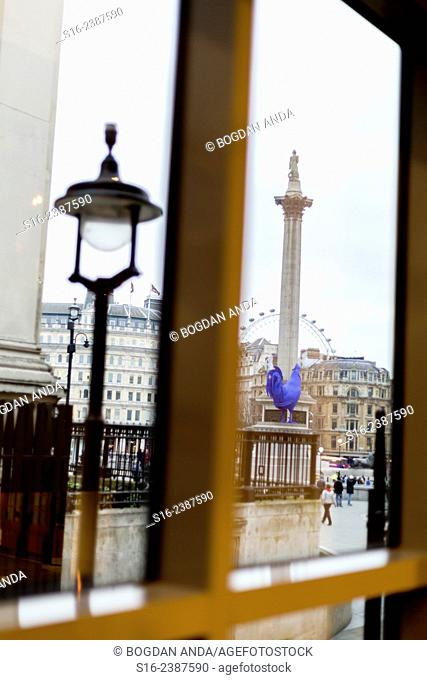 London, UK - Trafalgar Square in February 2015 (when Katharina Fritsch's blue Hahn sculpture was placed on the Fourth plinth) seen through a window of the...