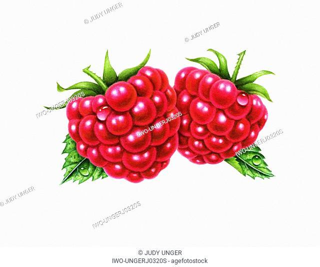 A Pair of Raspberries
