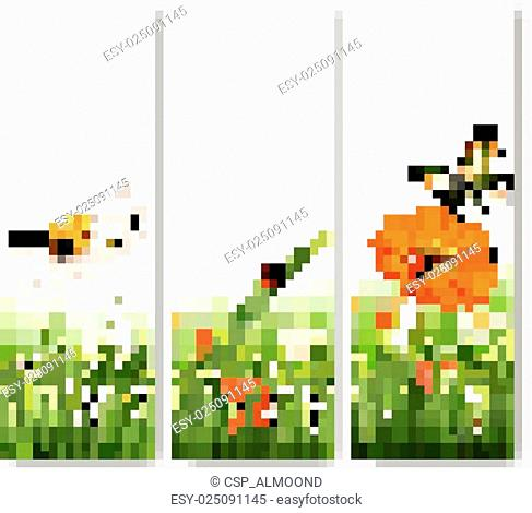 Summer nature banners with colorful flowers and butterfly. Vector