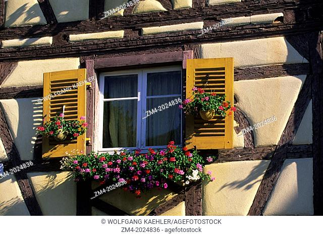 FRANCE, COLMAR, HALFTIMBERED HOUSE, WINDOW WITH FLOWERS