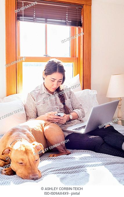 Woman sitting on bed with dog and laptop using smartphone
