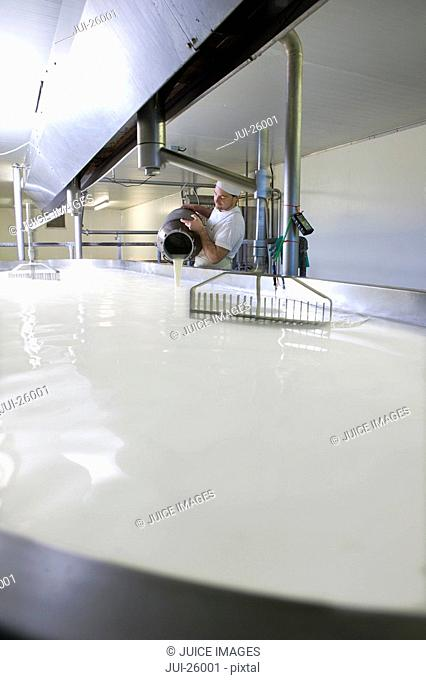 Cheese maker mixing rennet with milk in vat to begin cheddar cheese making process
