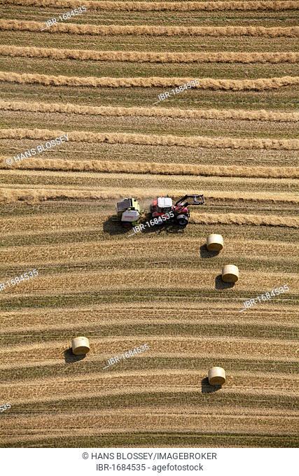 Aerial view, Obercastrop, harvester in midfield, Langeloh, silage rolls of straw, Castrop-Rauxel, Ruhr Area, North Rhine-Westphalia, Germany, Europe