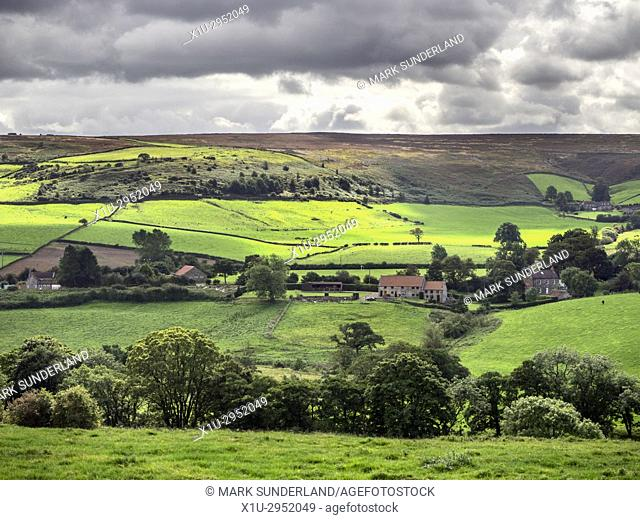 The Esk Valley in Summer near Danby North York Moors Yorkshire England
