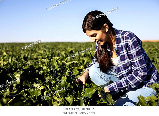 Young woman farmer looking on plants