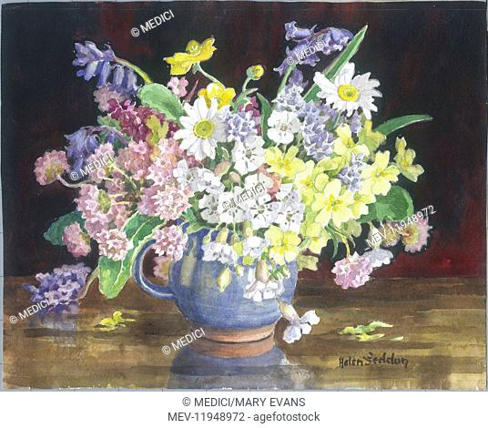 Wild Flowers from the Cornish Cliffs - mixed flowers, including bluebells and primroses, in a blue jug