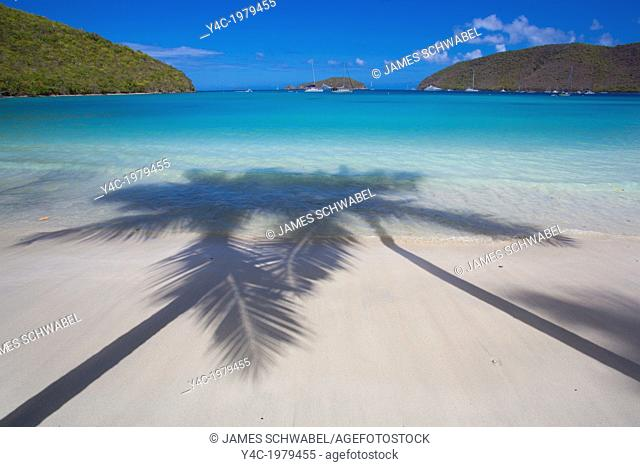 Shadows of Palm trees on Maho Bay Beach on the Caribbean Island of St John in the US Virgin Islands