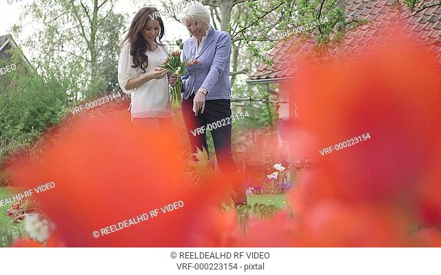 MS Two woman standing and holding flower / Breda, Noord-Brabant, Netherlands