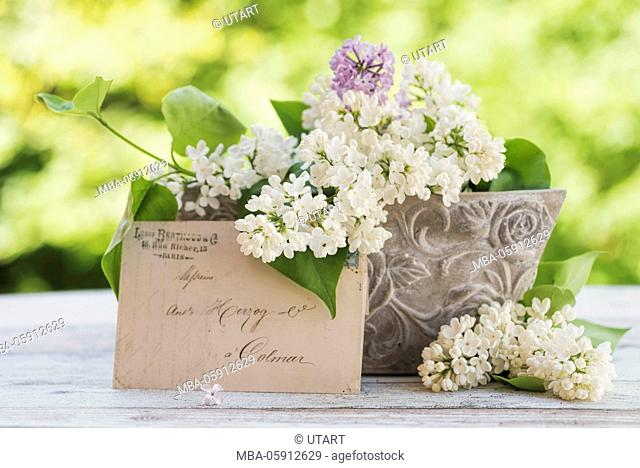 Stone flower bowl with lilac in white and mauve on old wooden board, leant an old letter, white lilac blossoms to the decoration