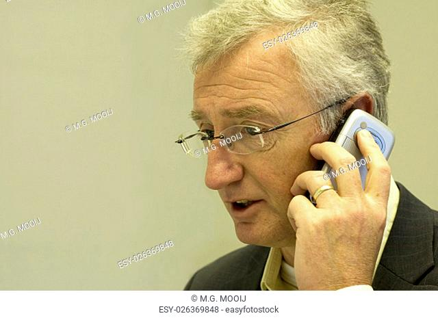 Senior consultant making a business call to his boss