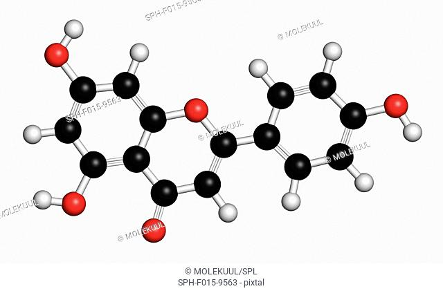 Apigenin yellow herbal dye, molecular model. Atoms are represented as spheres with conventional colour coding: hydrogen (white), carbon (black), oxygen (red)