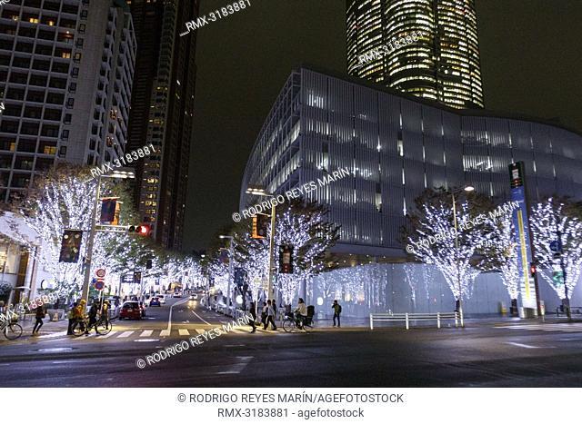 November 19, 2018, Tokyo, Japan - Winter decorations on display along the famous Keyakizaka Street at Roppongi Hills in Tokyo