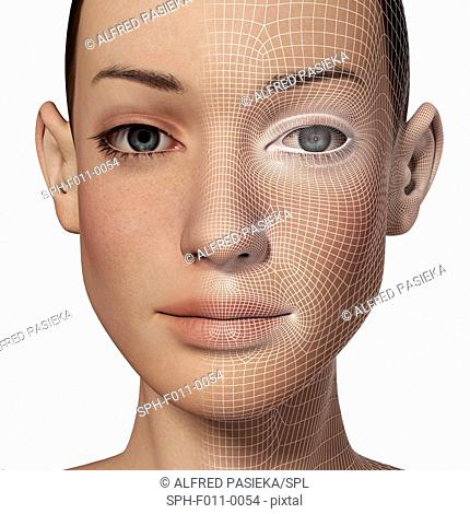 Female head with a biometric polygon map of facial features superimposed. The identification of a behavioural or physical trait for recognition purposes is...