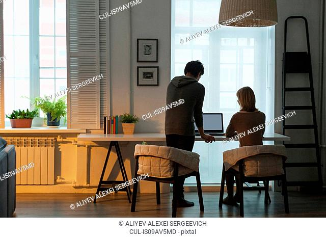 Rear view of mid adult couple using laptop at table in front of window