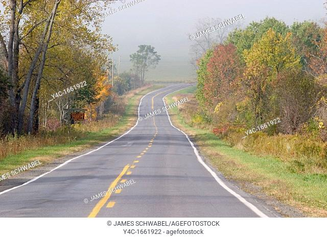 Road in early morning fog in the Finger Lakes region of New York State