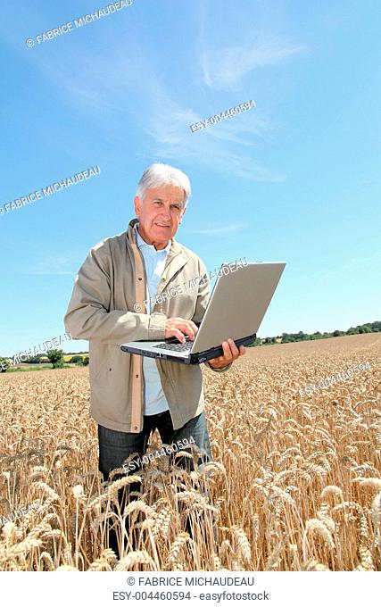 Agronomist in wheat field with laptop computer