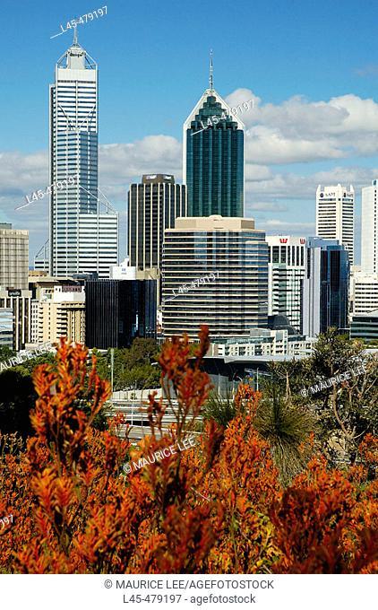 Perth skyline from King's Park. Australia. December 2005