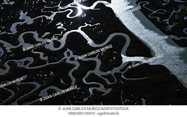 Odiel river marshland, Spain, Europe