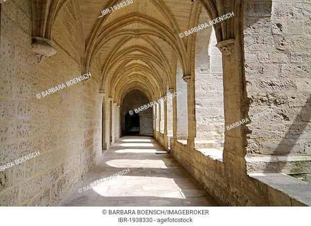 Chartreuse du Val de Benediction, Carthusian monastery, church, museum, Villeneuve les Avignon, Languedoc-Roussillon region, France, Europe