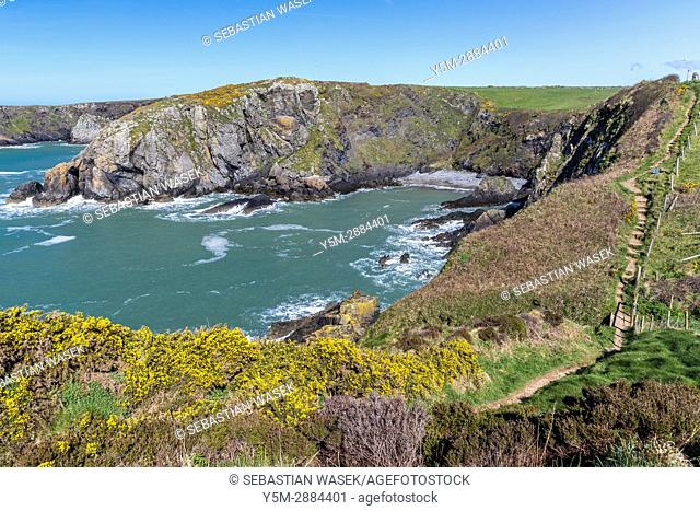 Pwll Llong seen from Wales Coast Path near Trefin, Pembrokeshire Coast National Park,Wales, United Kingdom, Europe