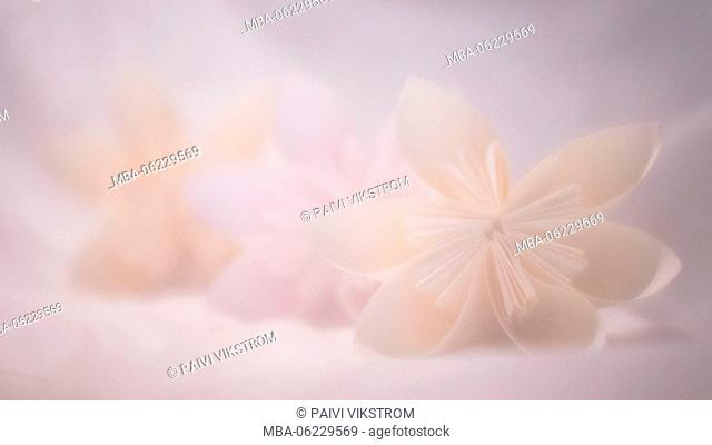 Three Origami Flowers Soft Pastel Color