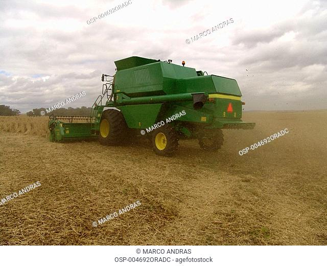a harvest machine working in the farm plantation