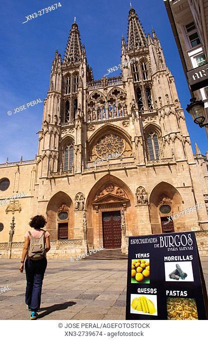 Cathedral of Burgos, traditional food, Burgos city, Way of St. James, Castilla y León, Castile and León, Spain, Europe