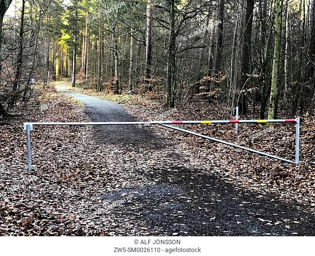 Forest path, blocked off with a barrier in Snogeholm, Scania, Sweden; Europe