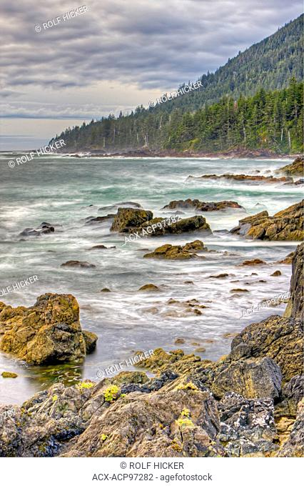 Rugged coastline and wave action along the West Coast at Cape Palmerston, Northern Vancouver Island, Vancouver Island, British Columbia, Canada