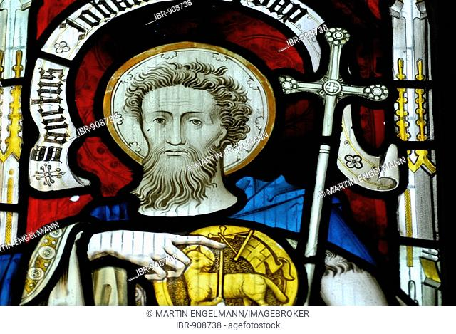 Saint in a church window, St. Andrew's Cathedral, Gothic cathedral, Wells, Mendip, Somerset, England, Great Britain, Europe