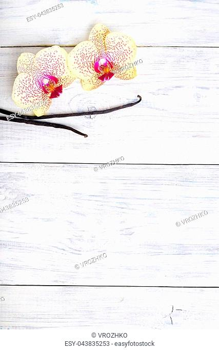 Vanilla pods and orchid flowers on white wooden background with copy space