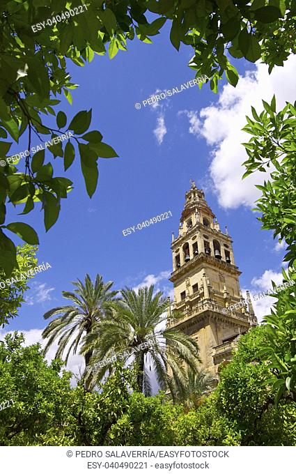 Tower of the mosque in Cordoba, Andalucia, Spain