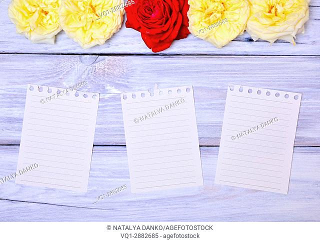 Three blank paper sheet with a notebook on a white wooden background