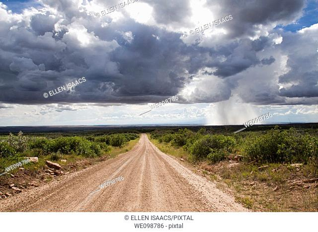 Isolated thundershower falling from looming cumulus cloud formations while sun shines on dirt road leading into the distance