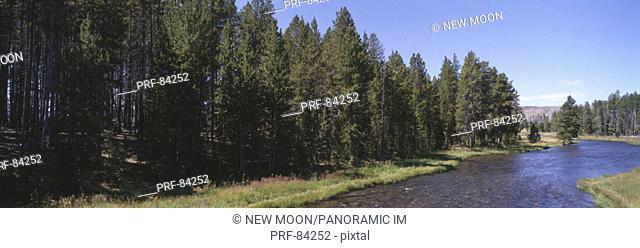 Nez Perce Creek Lower Geyser Basin Yellowstone National Park WY