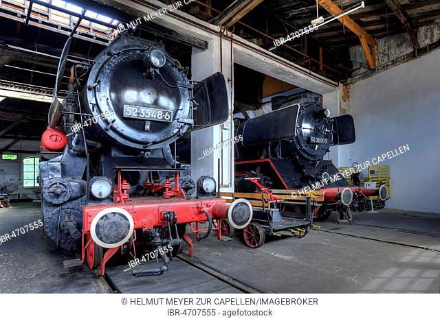 Steam locomotive 52 3548-6 from 1943, right steam locomotive 50 3600-9 from 1941 in the roundhouse, Bavarian Railway Museum Nördlingen, Nördlingen, Bavaria