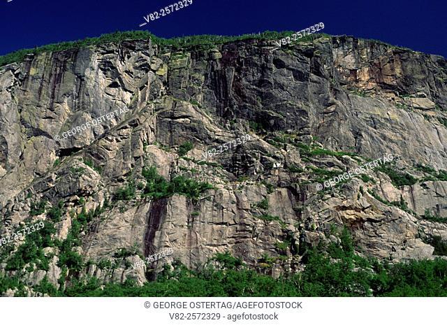 Wallface Cliff, High Peaks Wilderness, Adirondack Forest Preserve, New York
