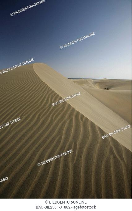 The sandy dunes of Maspalomas in sueden of the island grain Canaria on the Canary islands in the Atlantic, Spain