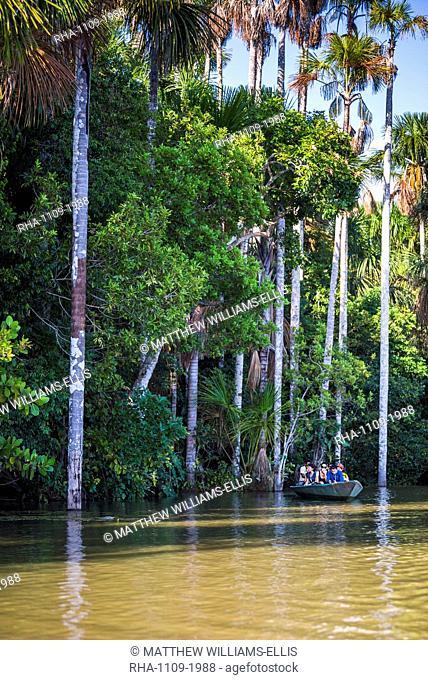 Canoe boat trip on Sandoval Lake, Tambopata National Reserve, Amazon Jungle of Peru, Peru, South America