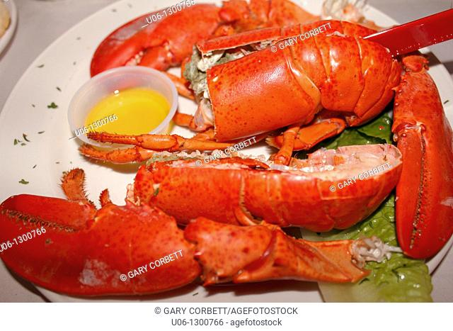 A lobster dinner in the shell presented on a plate and ready to eat