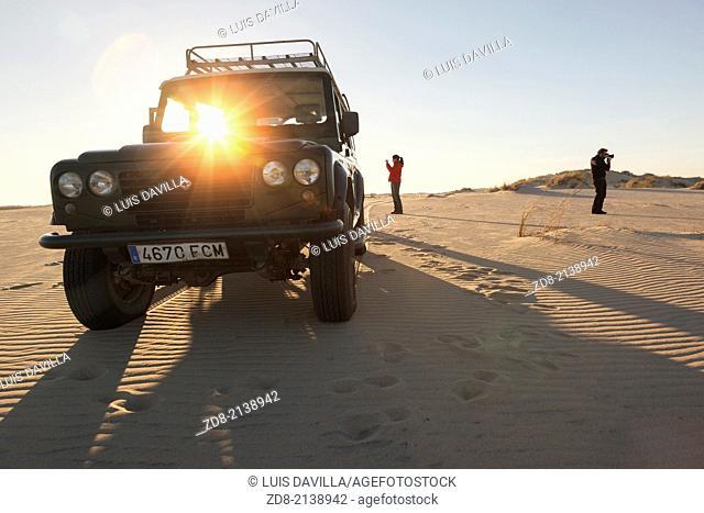 dunes in doñana national park.spain