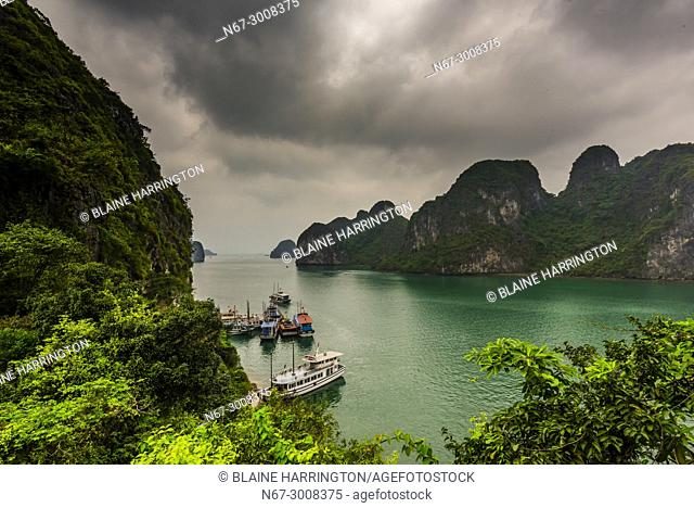 View from Lam Bo Island, Halong Bay, North Vietnam. The bay features 3,000 limestone and dolomite karsts and islets in various shapes and sizes sprinkled over 1