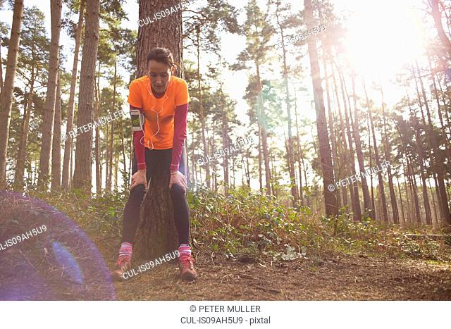 Mature woman runner taking a break in a forest