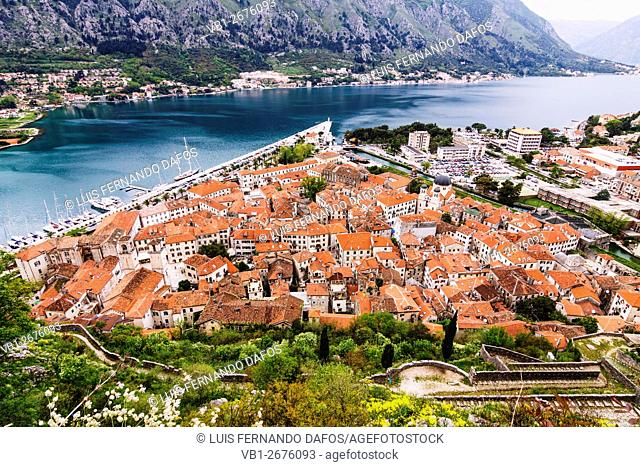 Kotor old town overview. Montenegro